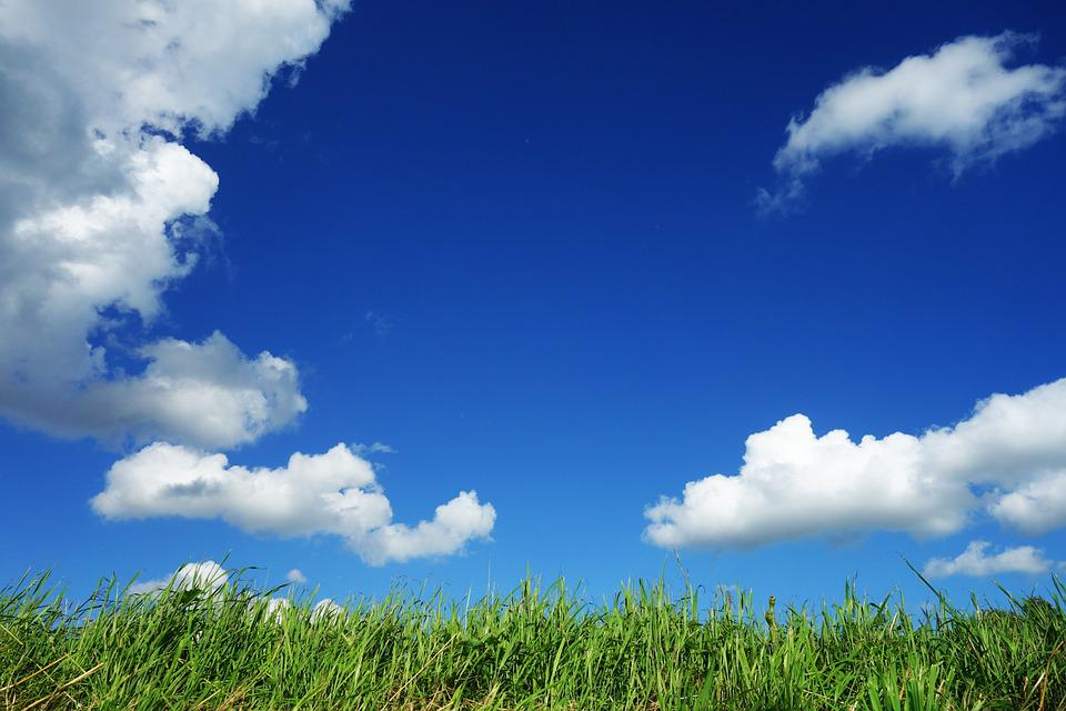 Sky, Clouds, Grass, Blue Sky, Above Grass, Sunny