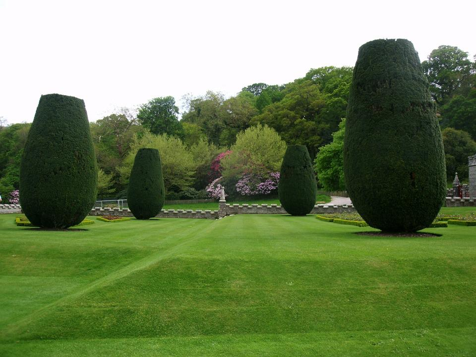 Park, Maintained, Rush, Grass, English Garden, Bushes