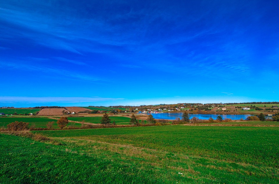 Farm, Lake, Canada, Water, Blue, Farming, Grass