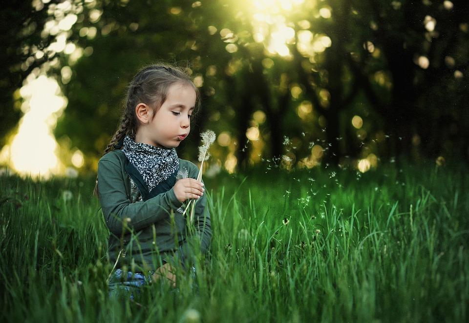 Child, Dandelion, Kids, Spring, Nature, Grass, Summer