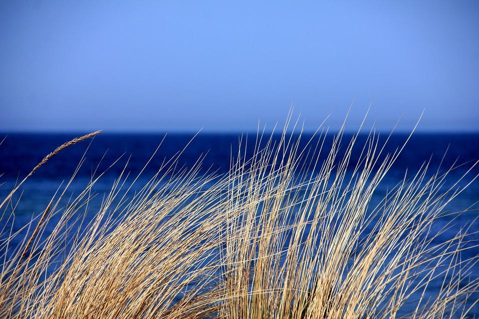 Sea, Water, Blue, Grass, Dunes, Marram Grass, Nature