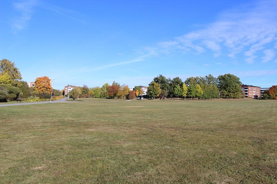 Grass Field, Green Field, Open Field
