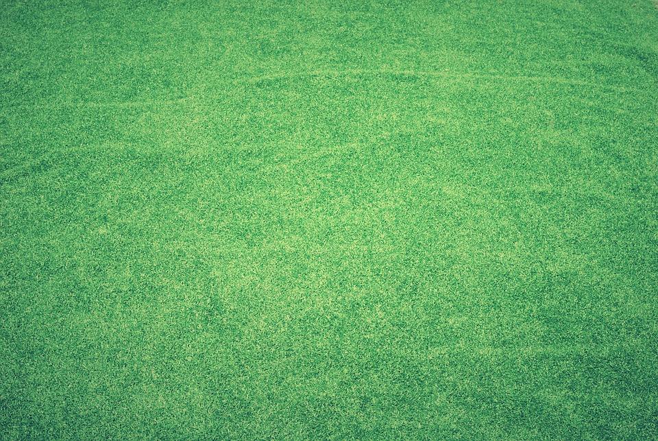 Lawn, Grass, Artificial Grass, Green, Field, Background