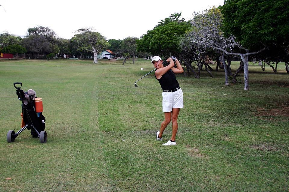 Golf Player, Golf, Golfing, Sport, Recreation, Grass