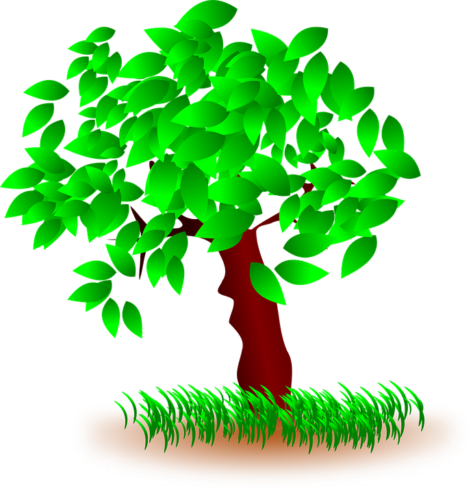 Tree, Leaves, Grass, Nature, Wood, Green