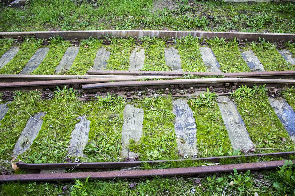 Synchronously, Train Tracks, Grass, Green, Transport