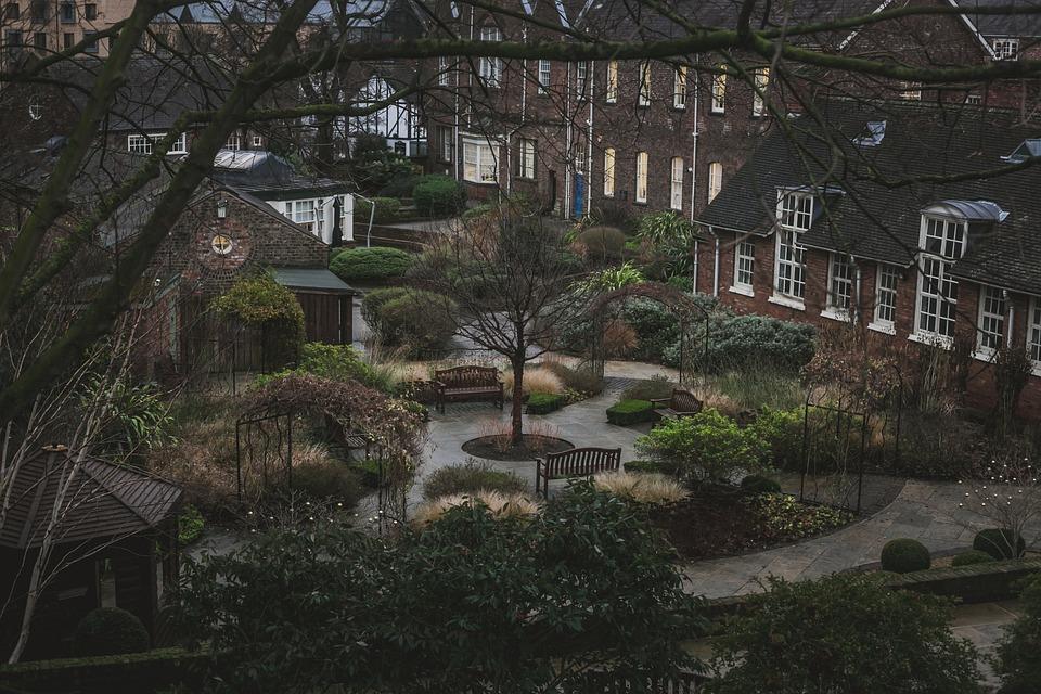 Backyard, Yard, Courtyard, Grass, Green, Greenery