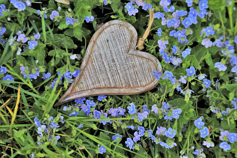 Heart, Wooden, Little Flowers, Spring, Blue, Grass