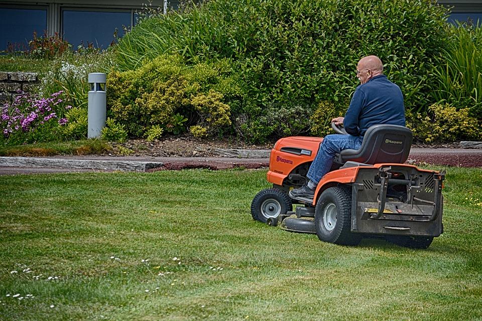 Turf, Grass, Mower, Man, Worker