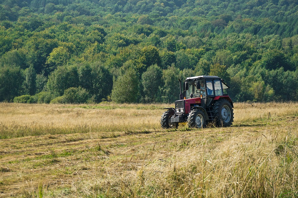 Tractor, Field, Meadow, Grass, Mowing The Grass