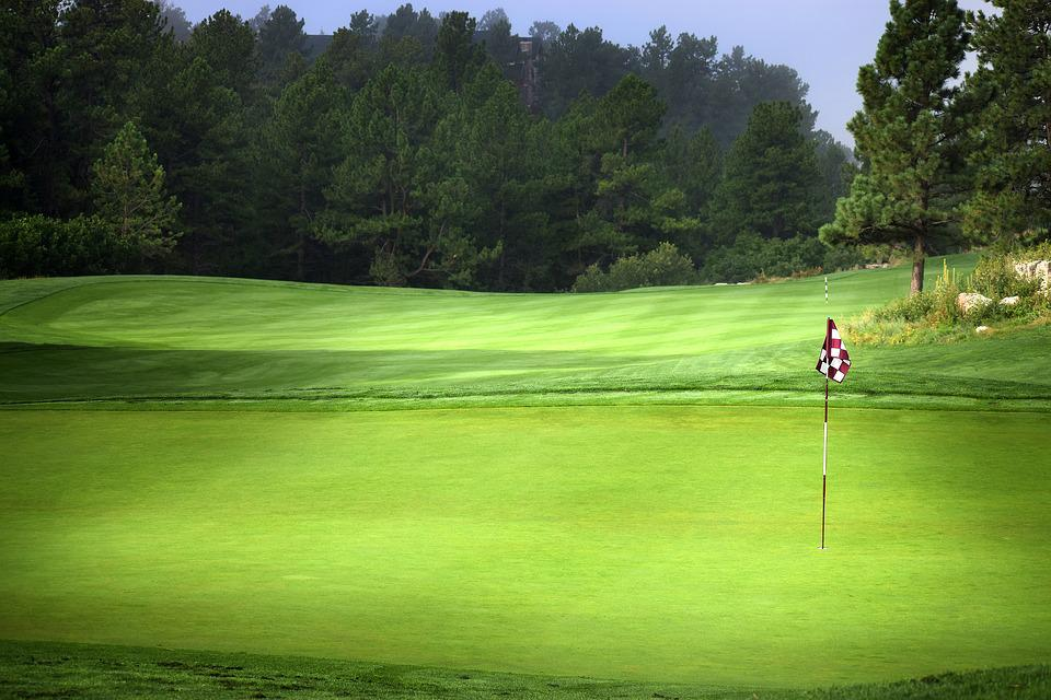 Labor Day, Golf, Grass, Lawn, Lawnmower, Nature