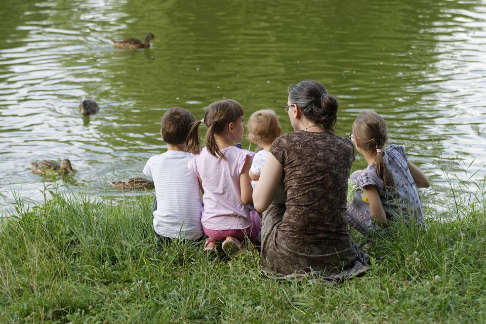 Family, Parent, Kids, Boys, Girls, People, Place, Grass