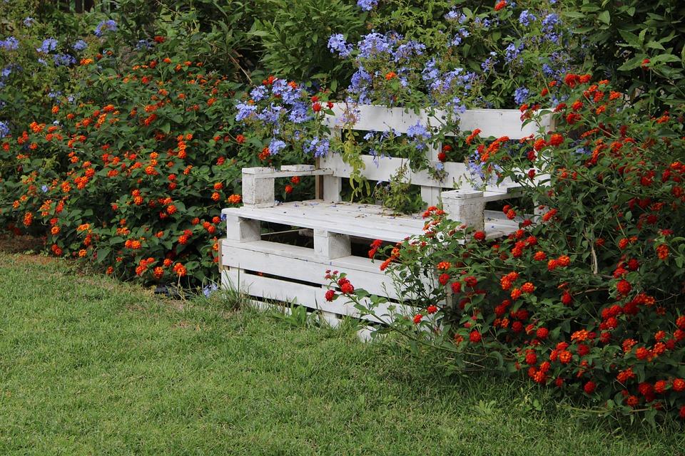 Park Bench, White, Garden, Flower, Red, Green, Grass