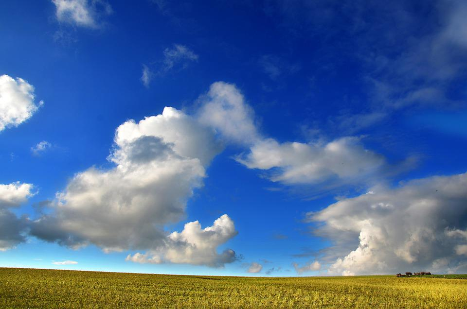 Countryside, Pasture, Agriculture, Grass, Meadow