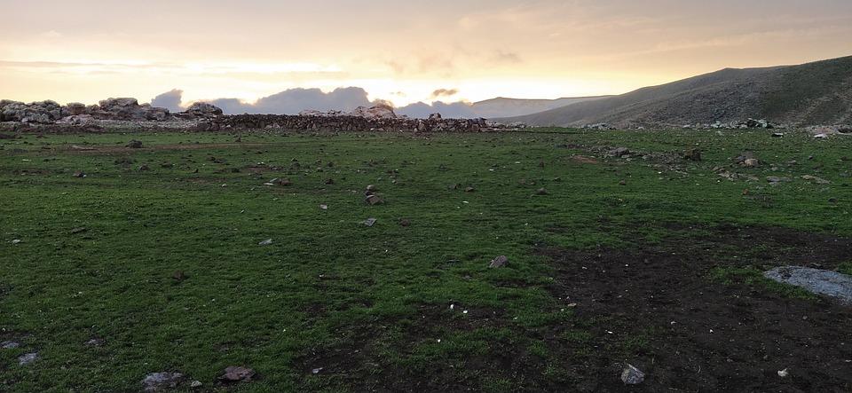 Grass, Sunset, Grassland, Rocks, Landscape