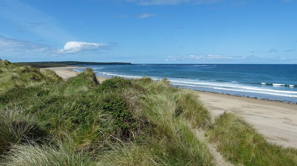 Beach, Grass, Sand, Shore, Seashore, Shoreline, Coast