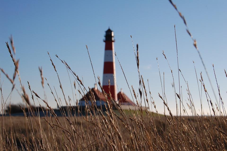 Lighthouse, Field, Grass, View, Seaside, Blue Grass