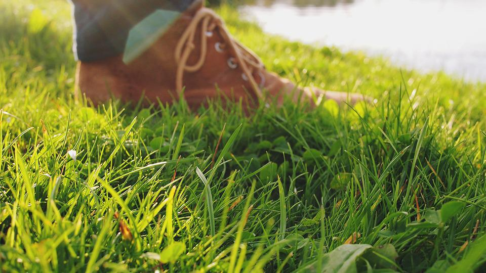 Shoes, Grass, Ground