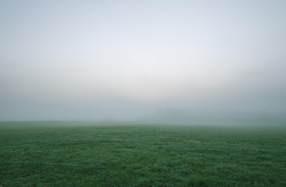 Grass, Field, Landscape, Fog, Sky, Mist, Cloud