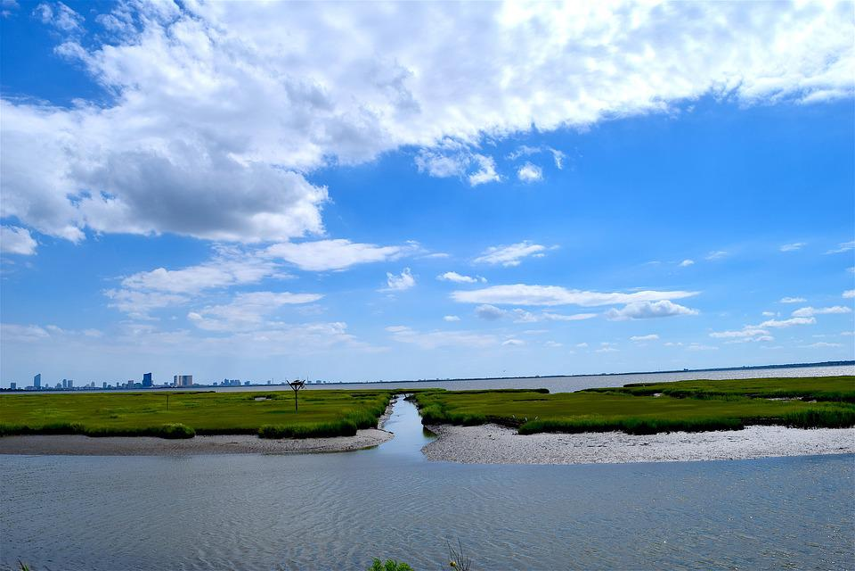Water, Coastline, Marshland, Estuary, Grass, Sunny