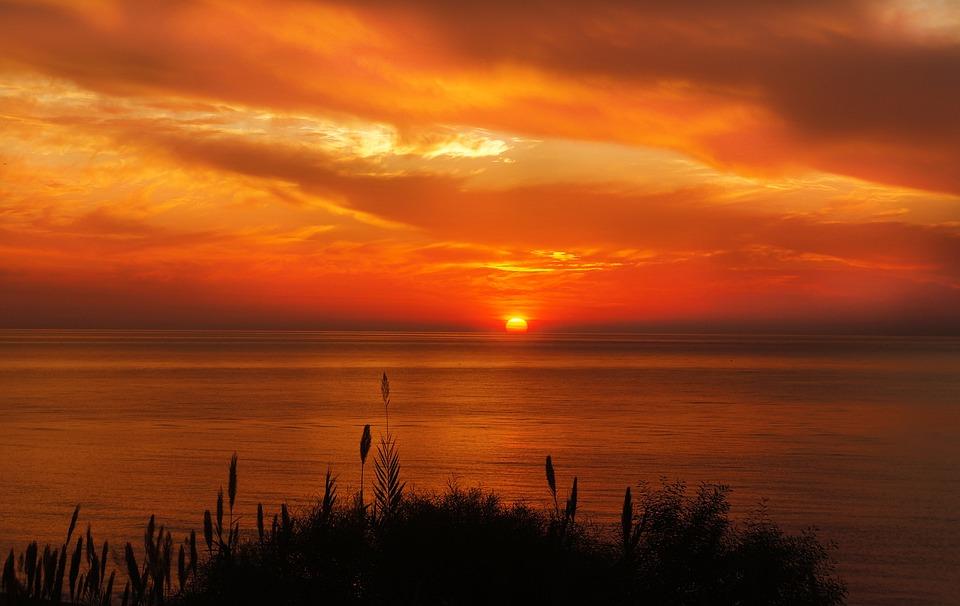 Grasses, Sea, Sunset, Sunrise, Sun, Sunlight