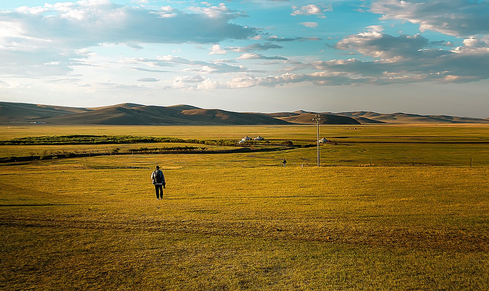 Grassland, Man, People, Landscape