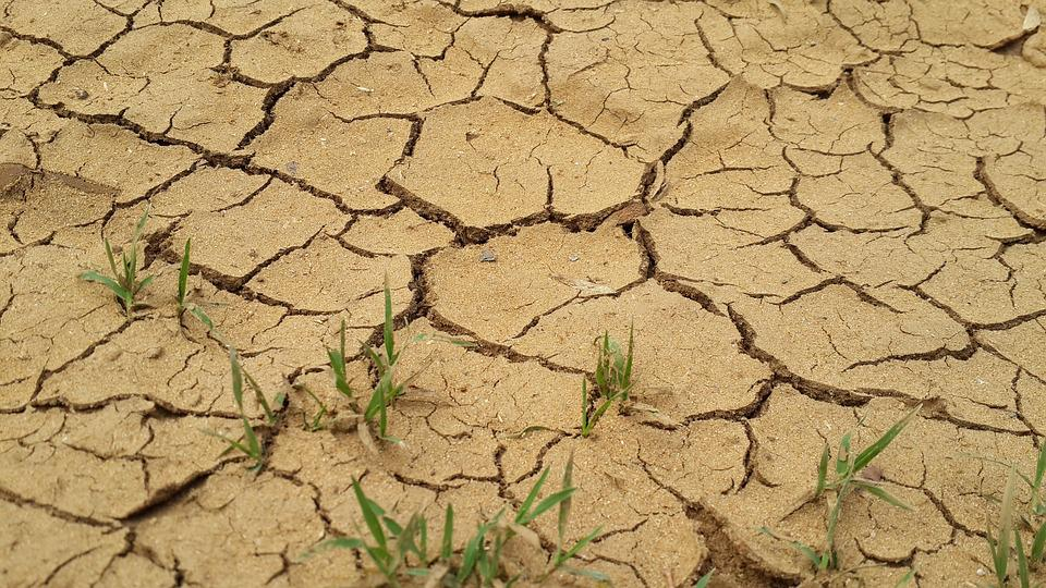 Drought, Gravel, Ground, Dirt, Dry, Environment