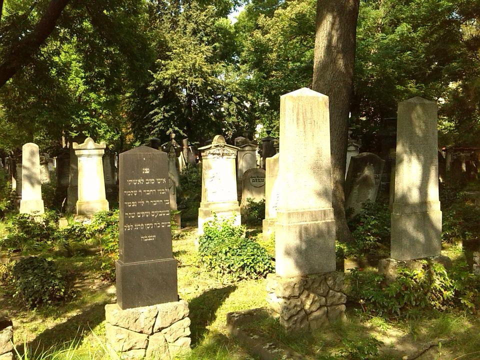 Graves, Grave Stones, Magdeburg, Cemetery