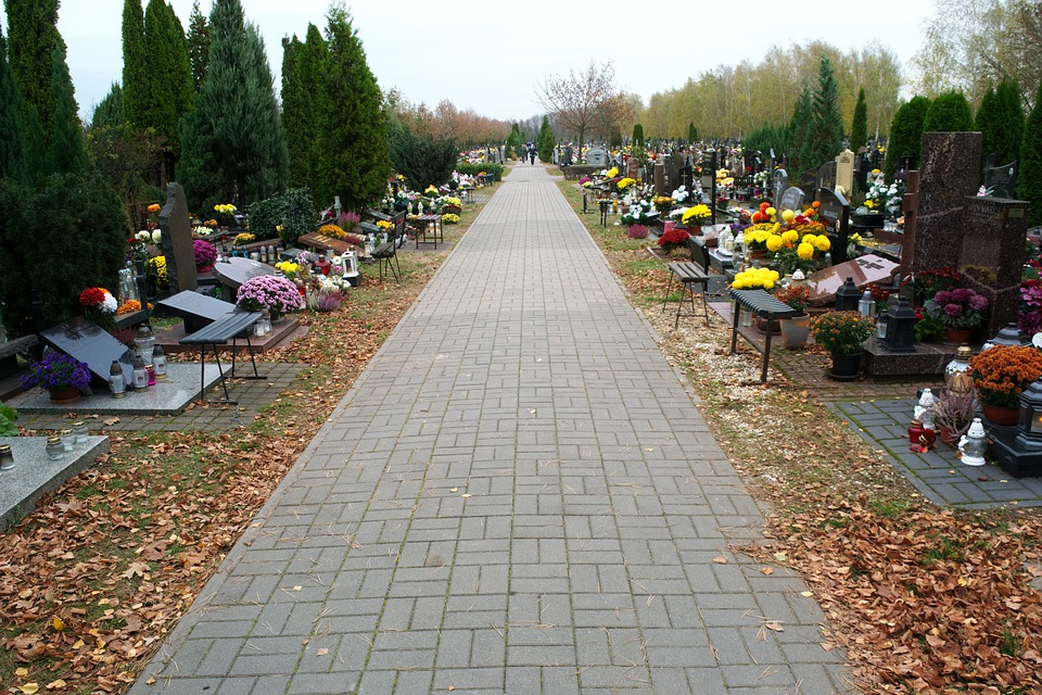 Cemetery, Alley, Paving, Graves, Flowers, Nature
