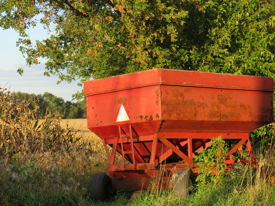 Gravity, Box, Corn, Autumn, Beans, Wheat, Farm, Old