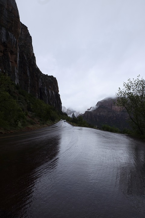Cold, Fog, Gray, Hazy, Lane, Mist, Monsoon