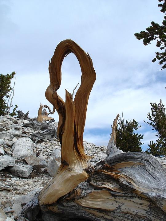 Great Basin National Park, Nevada, Landscape, Sky