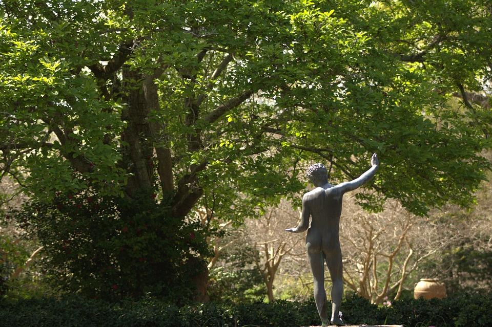 Tree, Garden, Statue, Greek, Sculpture, Green, Nature