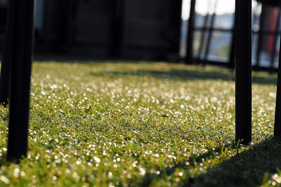 Beau Chair, Artificial Grass, Golf Club, Grass, Green