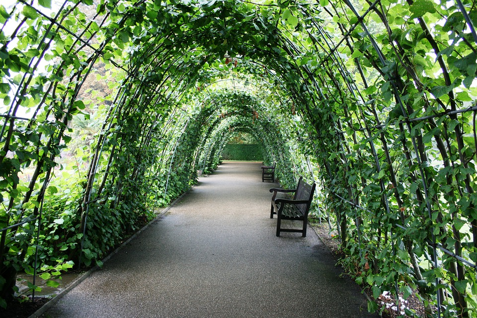 Tunnel Of Plants, Garden Tunnel, Green, Bank