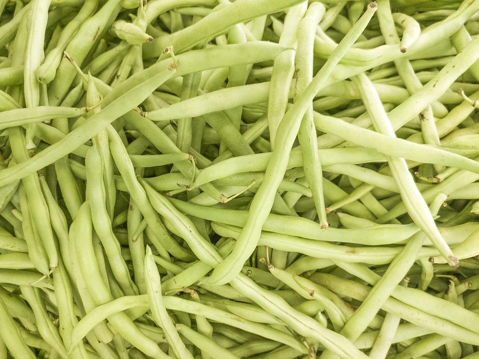 Green, Pea, Green Bean, Bean