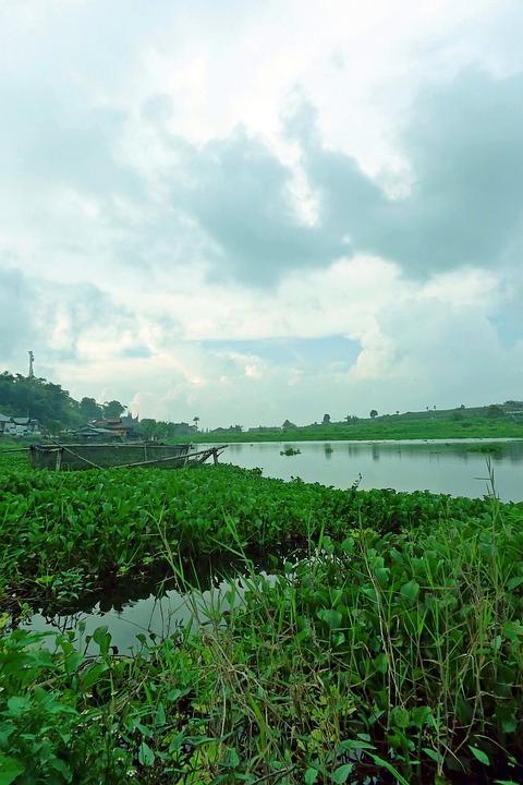 Landscape, Green, Blue, Sky, Water, River