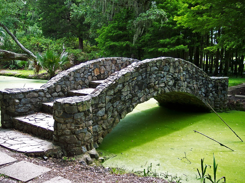 Bridge, Footbridge, Garden, Lake, Algae, Green