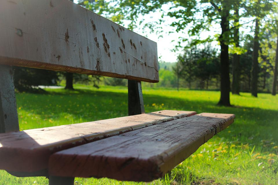Bench, Park, Quebec, Rest, Green, Canada