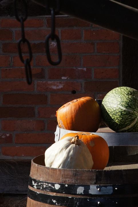 Pumpkins, Green, Orange, Wall, Brick, Chain, Colorful