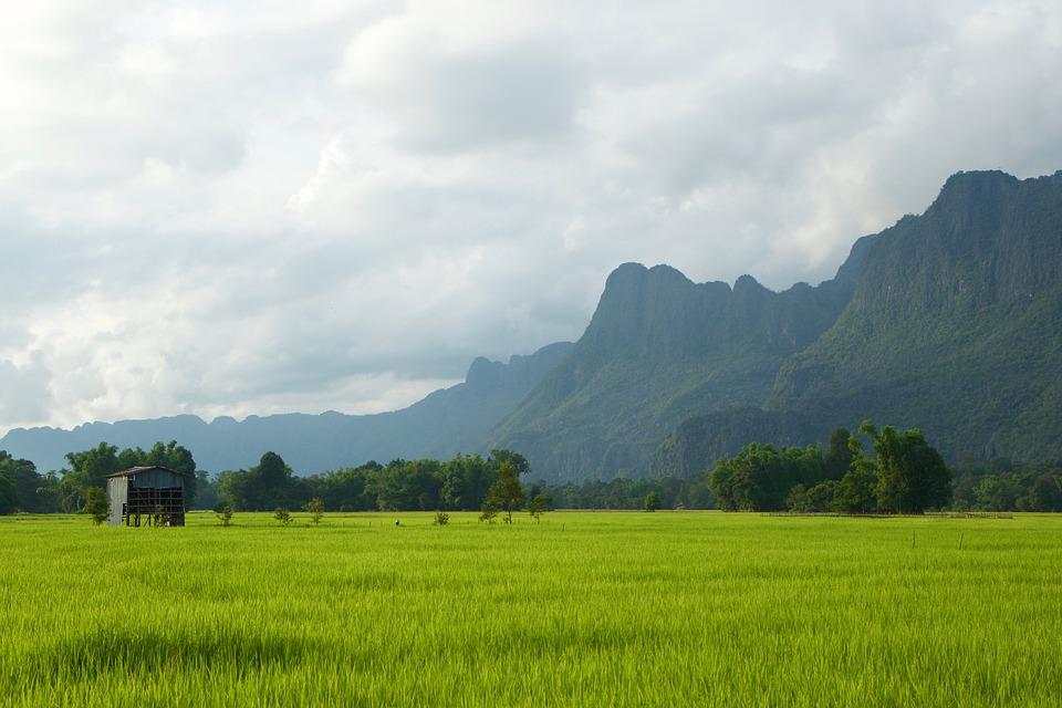 Laos, Rice Paddies, Green, Country, Hut