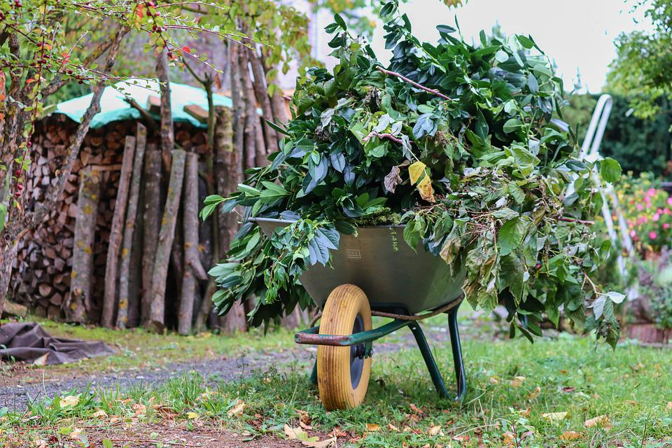 Wheelbarrows, Wheelbarrow, Green Cut, Tree Cuts