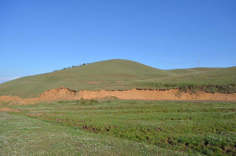 Dashanbao, Prairie, Green