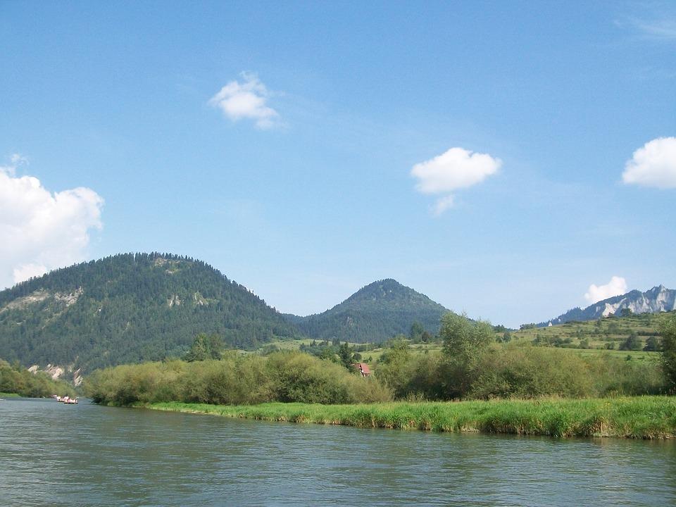 Nature, Landscape, Green, Dunajec, Tree