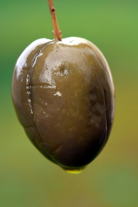 Olive, Olive Oil, Green, Eat, Food, Benefit From, Ripe