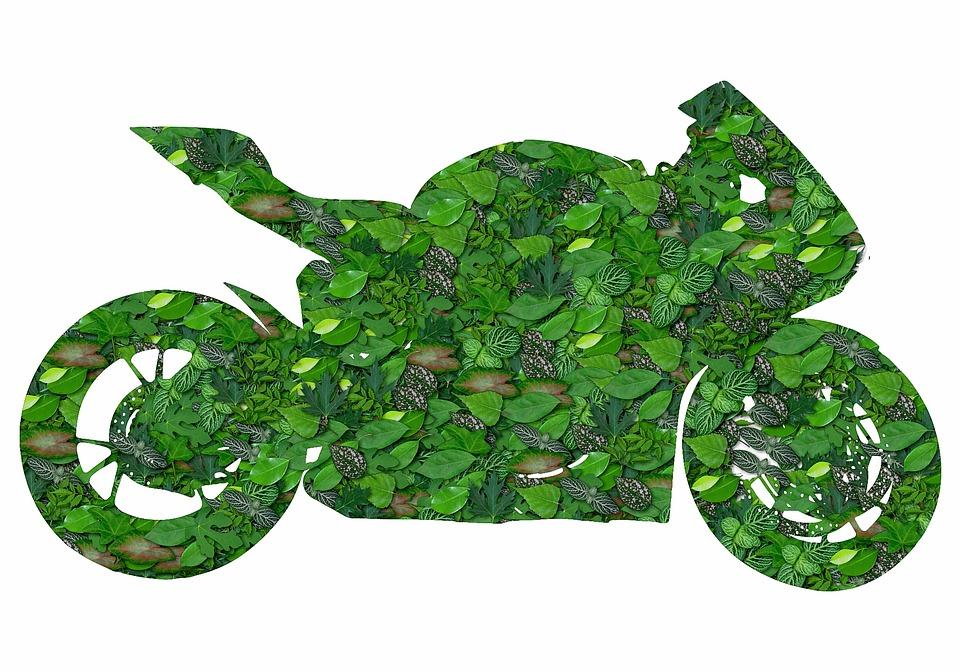 Green Bike, Ecology, Bike, Green, Ecological
