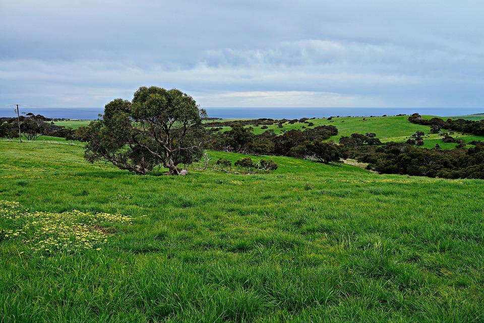 Rolling Meadows, Green Fields, Wide Open Spaces