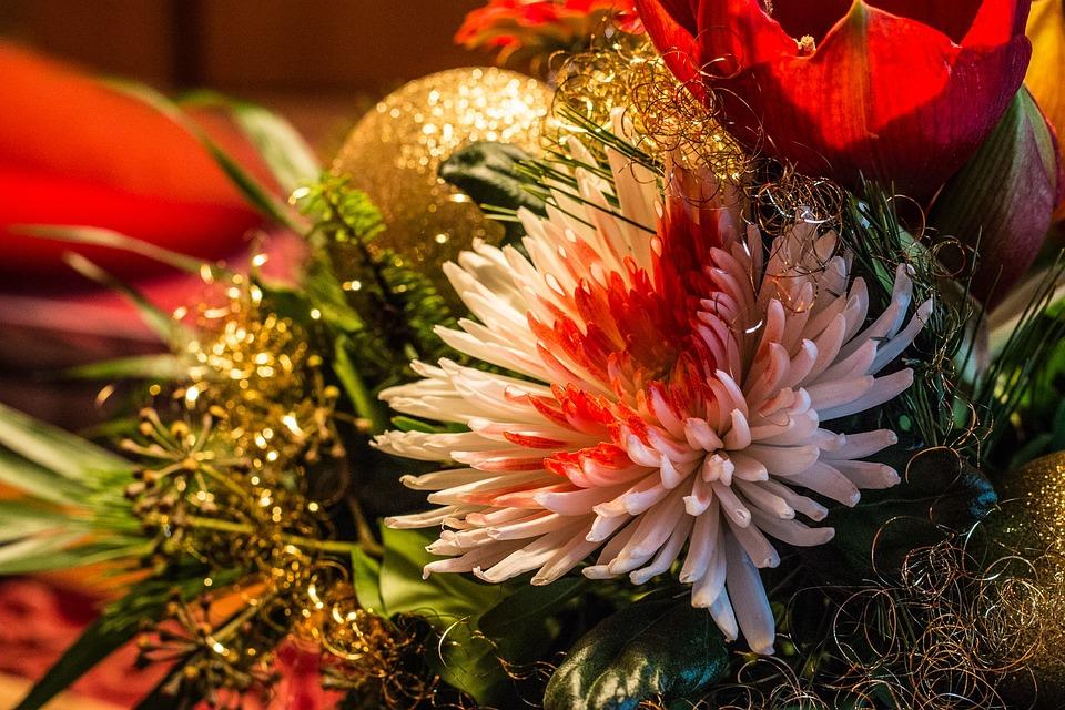Christmas, Fir Tree, Christmas Tree, Green, Background