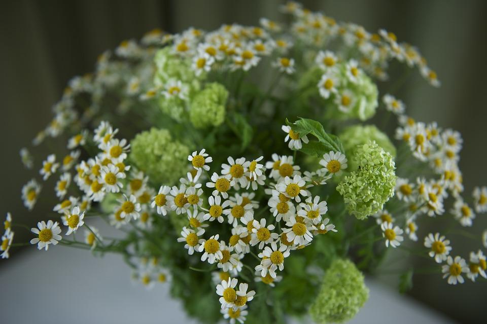 Flowers, Green, White, Bouquet