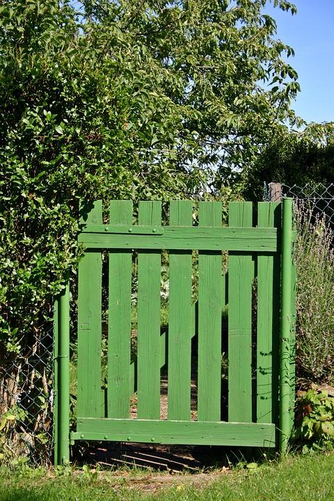 Garden, Allotment, Garden Gate, Green, Summer, Colorful